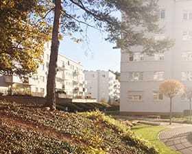 Projekt zieleni dla osiedla – Komandorskie Wzgórze. Realizacja.