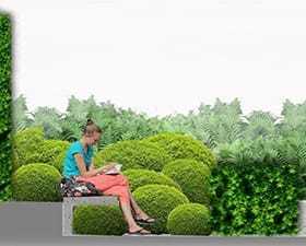 Projekt koncepcyjny zieleni przy ul.okólnik 9A
