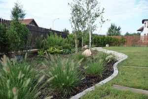 projekt-i-realizacja-ogrodu2